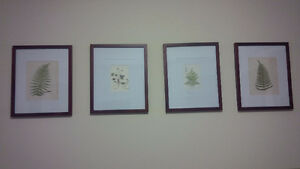 4 New Floral Pictures - sale ! Kitchener / Waterloo Kitchener Area image 3