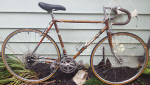 Raleigh Super Course 10 Speed