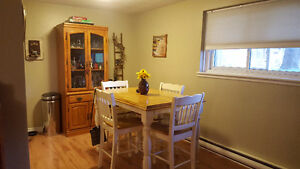 2 Bedroom Apartment for Rent - 380 Dufferin Ave.