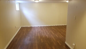 Spacious and bright basement bedroom for grad student/young pro