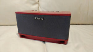tube & solid states guitar amps: roland, fishman, fender
