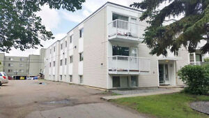 URGENT Newly Renovated Apartment for Rent (utilities included) Edmonton Edmonton Area image 8