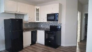 Luxury Band New Suite for Rent in Crescent Acres