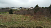 Vacant Lot on Country Drive 2 with $10100 PRICE REDUCTION!!