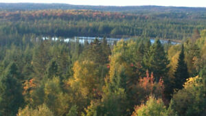 Cottage or Home for sale in Magnetawan