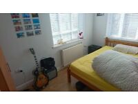 Double Room - Short Term Only - 25th July to 22nd August