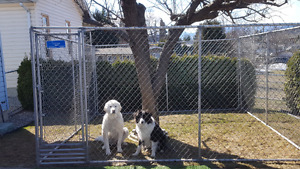 Chain link dog run for sale.