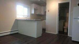 Furnished Downtown Bachelor Apartment Available Immediately