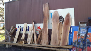 LIVE EDGE LUMBER PIECES NEAT SHAPES London Ontario image 2