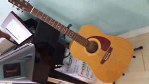 Norman B15 Acoustic/Electric guitar + Stand