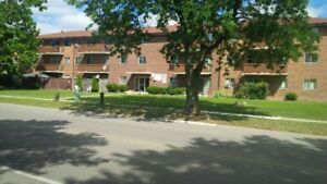 Large, Bright 3 Bedroom Apartment
