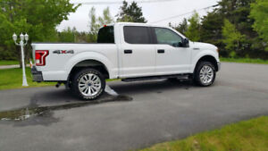 2015 Ford F-150 Pickup Truck (Take over monthly payments)