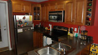 Bright, Spacious modern, 2 bedroom Aparment for rent August 1st