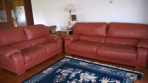 Luxuary Leather Long couch