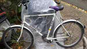 Superb Raleigh bike mint condition