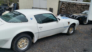 79 Trans Am project car