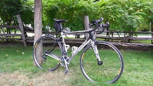 Vélod e route carbone norco valence c1