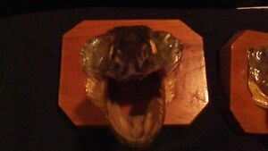 BASS AND PIKE FISH HEADS MOUNTED ON WOOD PLAK ODDITY Stratford Kitchener Area image 2