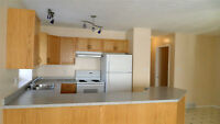 3 Bed 2 Bath Upper Level Suite Near Cobblestone