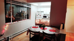 BEAUTIFUL APARMENT FOR RENT IN DOWNTONW AVAILABLE 1 JANUARY