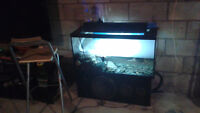 Fish tank with fogger water tight 50 obo priced to go