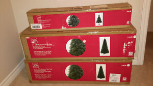 Indoor Christmas Trees
