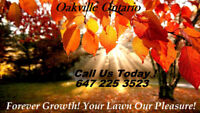 Forever Growth! Your Lawn Our Pleasure!