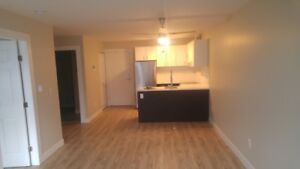 Kitsilano Apartment completely Renovated a must see