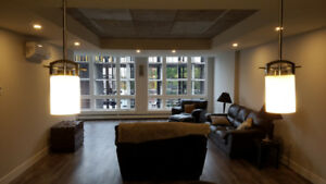 Seeking roommate for 2 bedroom apartment at The Knight for Jan 1