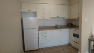1 Bedroom Apartment for Rent Available in December