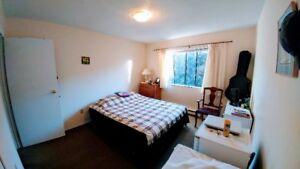 Furnished Bedroom Sublet - Dec10 to Jan10