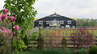 Outdoor Board Only.  75 Acres and Indoor riding Arena 80' x 160'