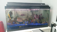 aquarium 25 gallon a vendre