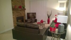 fully furnished and renovated one bedroom apartment Edmonton Edmonton Area image 5