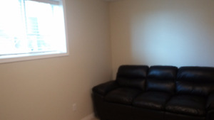 Partially furnished 1 bedroom basement suite