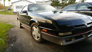 89 Daytona Shelby for sale or trade