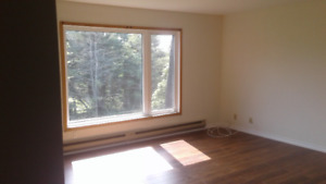 Large Bright 2 bedroom Amherst
