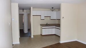 Fully renovated 2 bedroom apt in Mount Forest