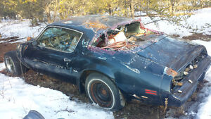 trans am project or parts car