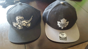 Maple Leafs and Raptors Snap Backs