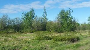 Reduced to sell. 40 acres with shop Prince George British Columbia image 5