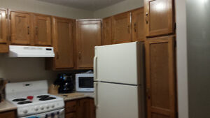 Great clean spacious 1 BR apartment - Moving and must sublet
