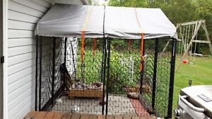 American Dog Kennel Cage