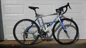 Giant TCX for sale
