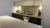 Luxury 2 Beds, 2 Wash Condo Downtown - Avail Sept 1st