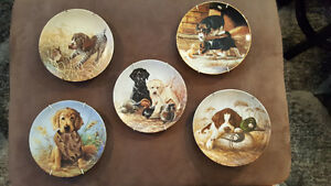 Sporting dog collectible Plates