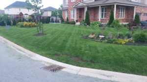 Grass Cutting and much more.