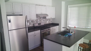 Newly Renovated 2 Bedroom Apartment In East Hamilton