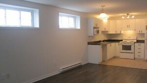 $850 / Great Location - Spacious 2BDR Basement Apt - Aylmer