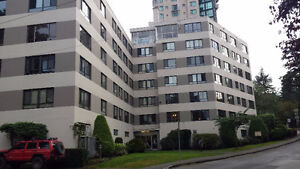 LARGE 1 BEDROOM SUITE WITH VIEW OF PARK JUST WEST OF DENMAN